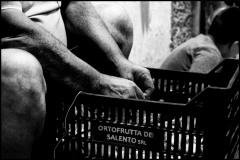 1_2018Gargano©giorgiocottini-4